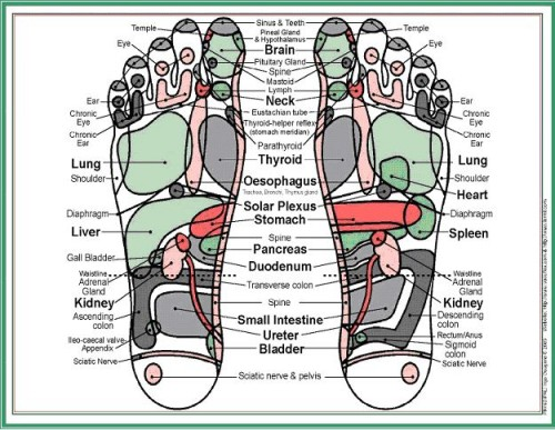 Reflexology Redditch at the foot clinic headless cross